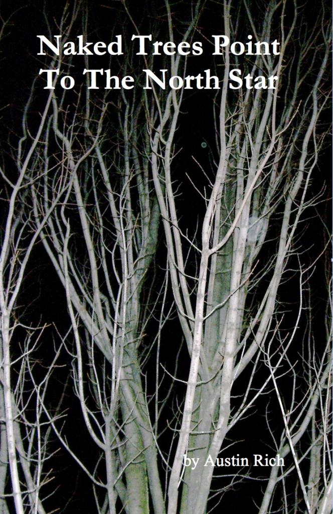 naked-trees1